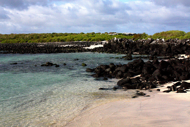 Countless deserted beaches are just one of the things to see in the Galapagos Islands...!