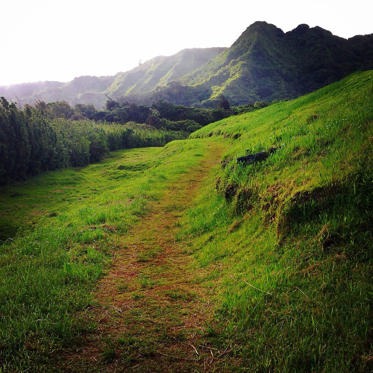 Nature close by to the city is among the best reasons to travel to Honolulu