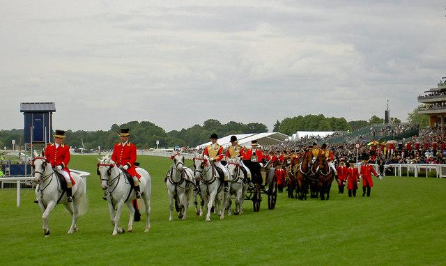 photo by CC user Steve F on wikimedia